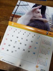 SMCカレンダー2020